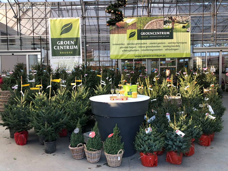 Kerstbomen In Sint Kruis Groencentrum Inspiratie Voor Uw Tuin